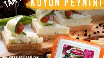 Harika Ezine Peyniri Nereden Alınmalı